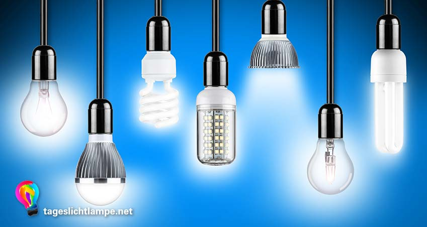 Verscheidene LED Tageslichtlampen hängen nebeneinander. Unterschiede zwischen LED Tageslicht Leuchtmitteln